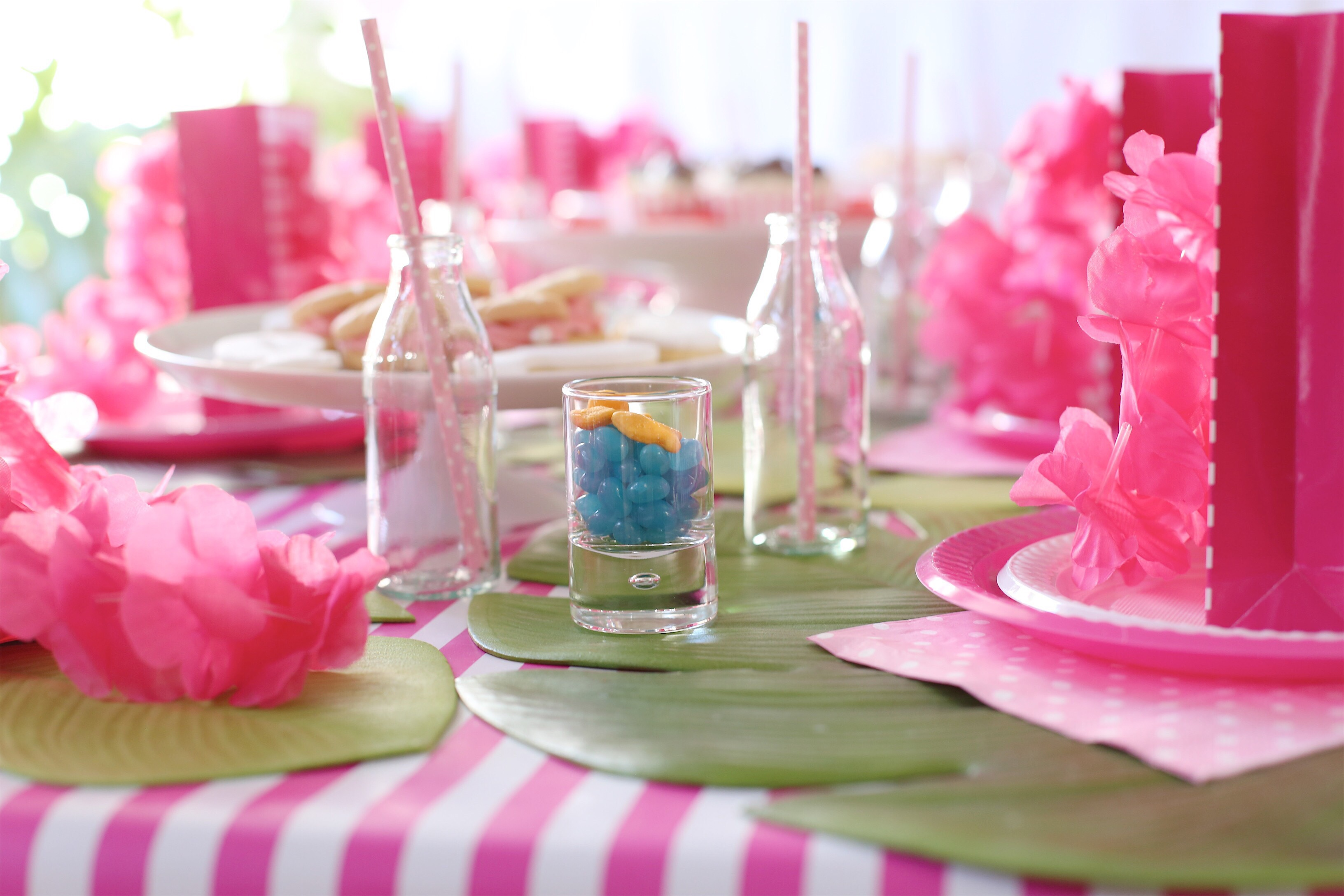 Table setting for the Moana party.