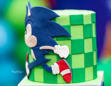 Sonic the Hedgehog party, The ultimate Sonic the Hedgehog party