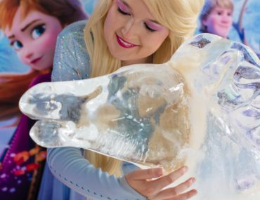 , Into the Unknown – a Frozen II inspired fundraiser for WIRES Wildlife Rescue