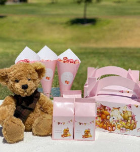 vintage Teddy Bears' picnic, A vintage Teddy Bears' picnic party